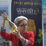 Ce vinuri au fost degustate la pre-evenimentul VINVEST 2019?